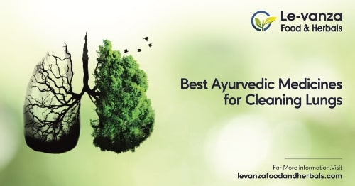 Best Ayurvedic Medicines for Cleaning Lungs