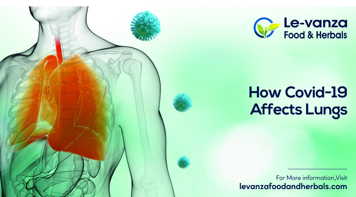 How Covid-19 Affects Lungs