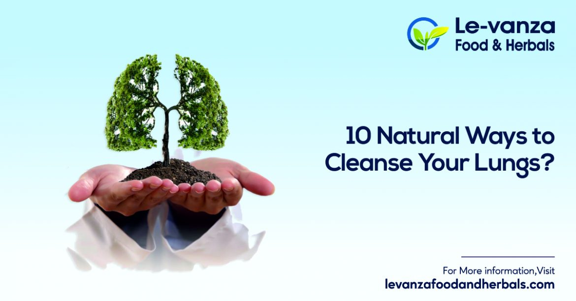 10 Natural Ways to Cleanse Your Lungs