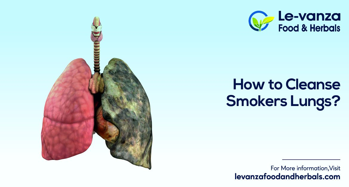 How to Cleanse Smokers Lungs? Ayurvedic Lungs Supplement